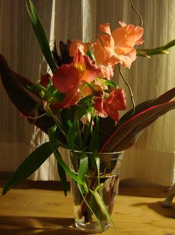 091211_flowers