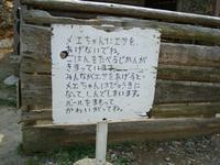 100504_mashiko11