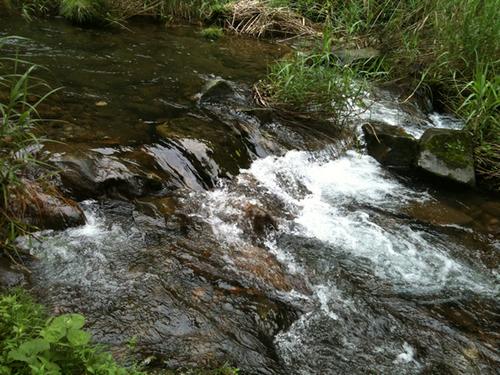 100812_river_2